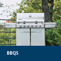BBQs barbeques barbecues